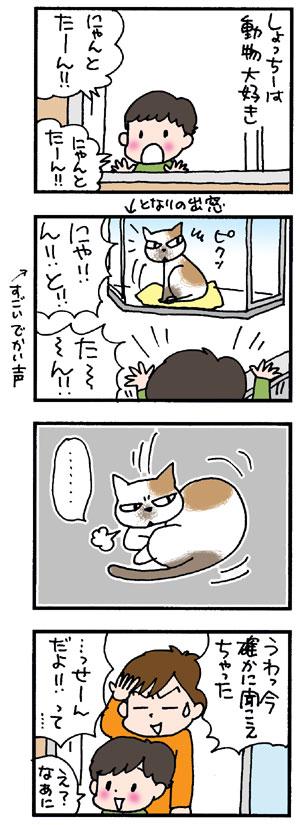 となりのネコさん